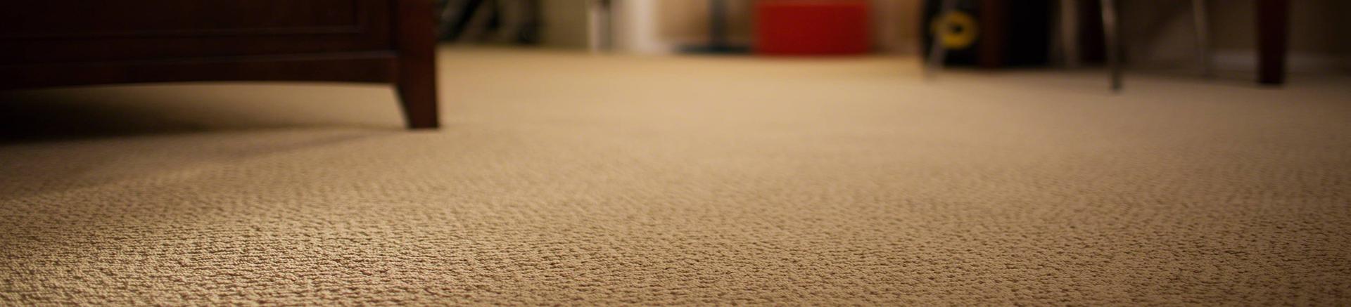 Screen plus costa rica soluciones decorativas alfombras - Cubre piso alfombra ...